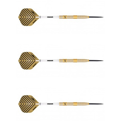 daryl-gurney-darts